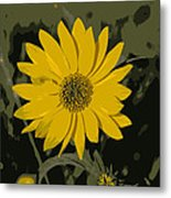 Posterized Smooth Oxeye Metal Print