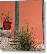 Pot Plants Metal Print