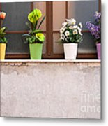 Potted Flowers 01 Metal Print by Rick Piper Photography