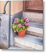 Potted Plant Front Of House Metal Print