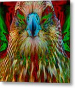 Power Hawk 1 Metal Print by Colleen Cannon