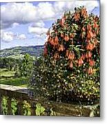 Powis Castle Terrace Metal Print