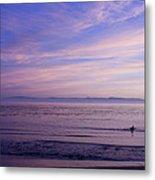 pr 241-Lavender Sunset Metal Print