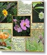 Prairie Flowers Metal Print