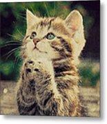 Praying Cat Metal Print