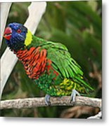 Pretty Bird Metal Print