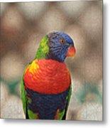 Pretty Bird - Rainbow Lorikeet Metal Print
