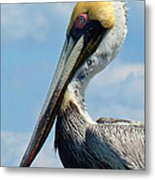 Pretty Blue Eyes Metal Print