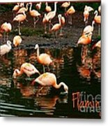 Pretty Flamingos Metal Print