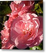 Pretty Pink Bunch Of Roses Metal Print