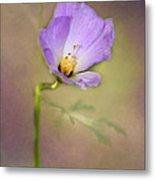 Pretty Purple Flower Metal Print