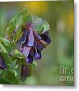 Pretty Purple Flowers In Ireland Metal Print