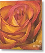 Pretty Rose Metal Print