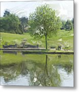 Pretty Tree In Park Picture.  Metal Print