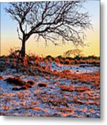 Prevailing Metal Print by JC Findley