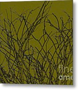 Prickly Branches Metal Print