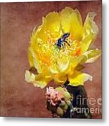 Prickly Pear And Bee Metal Print