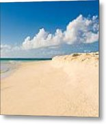Prickly Pear Beach Metal Print