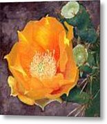 Prickly Pear Blossom Metal Print