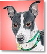 Princess - A Former Shelter Sweetie Metal Print