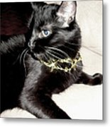 Princess Lucy Metal Print