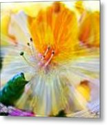 Prisms Of Nature - Meditation - Rhododendron  Metal Print