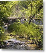 Pristine Forest Stream Metal Print