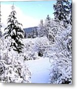 Pristine Winter Trail Metal Print