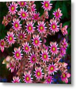 Promising Pink Petals Abstract Garden Art By Omaste Witkowski Metal Print