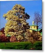 Prospect Park In Brooklyn II Metal Print