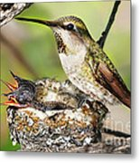 Proud Mom Metal Print