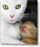 Proud Mother Metal Print by Jo Collins