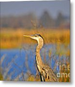 Proud Profile Metal Print