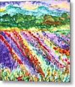 Provence France Field Of Flowers Metal Print