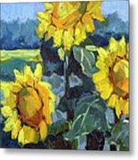 Provence Sunflower Trio Metal Print