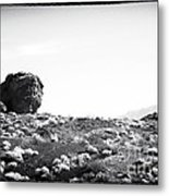 Proving Grounds Metal Print