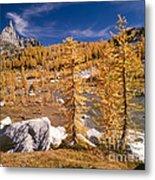 Prusik Peak Above Larch Grove Metal Print
