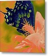 Psychadelic Butterflys Metal Print