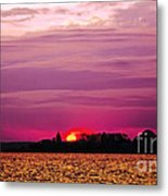Psychoactive Sunset Metal Print