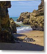 Pt Reyes National Seashore Metal Print by Bill Gallagher