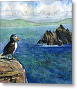 Puffin At Skellig Island Ireland Metal Print