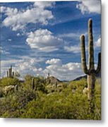 Puffy White Clouds  Metal Print