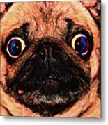 Pug Dog - Painterly Metal Print by Wingsdomain Art and Photography