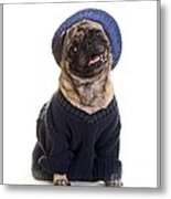 Pug In Sweater And Hat Metal Print