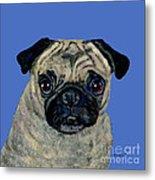 Pug On Blue Metal Print