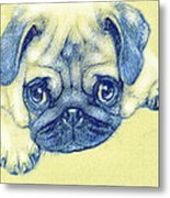 Pug Puppy Pastel Sketch Metal Print