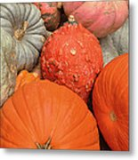 Pumpkin Happy Metal Print