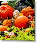 Pumpkin Harvest Metal Print by Karen Wiles