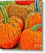 Pumpkin Metal Print by Baywest Imaging