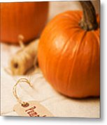 Pumpkin Label Metal Print
